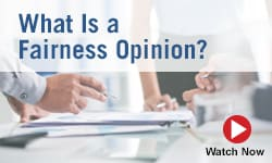 What is a Fairness Opinion?